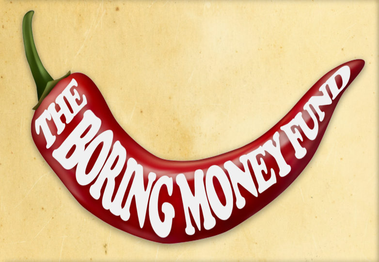 Holly's Blog: The Boring Money Fund - how have we done?